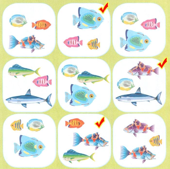Собери 9 разных рыбок