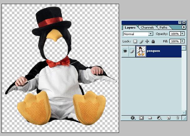 Файл шаблона, открытый в Photoshop