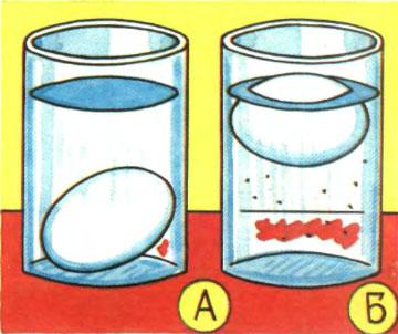Яйцо в соленой воде не тонет