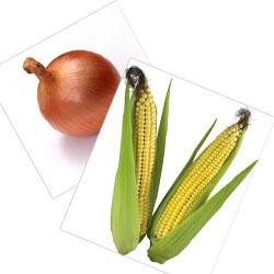 Лук. Кукуруза. Клипарт
